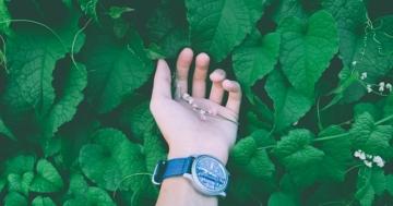 Uhren mit grünem Zifferblatt